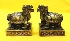Pair of Mini Dragon Tortoise