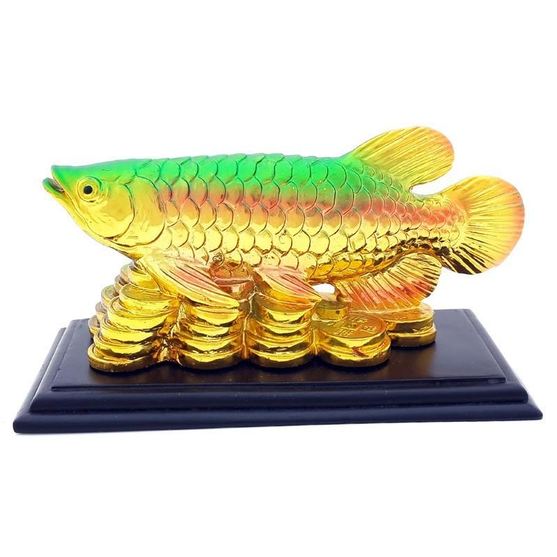 Feng Shui Golden Arowana on a Bed of Coins