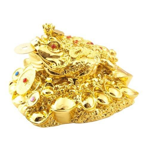 King Money Frog - Golden