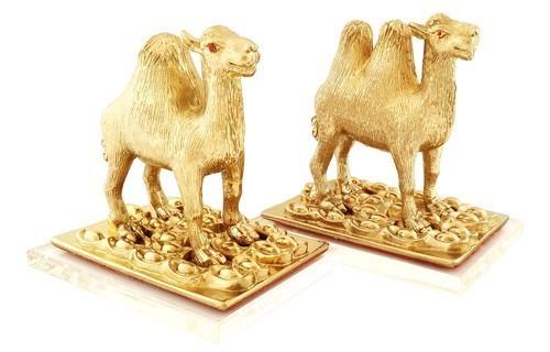A Pair of Golden Camels to Safeguard Cash Flow