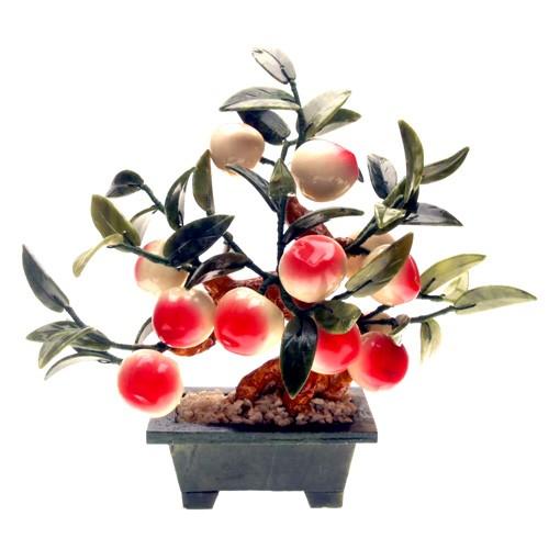 Jadeite Peach Plant with 12 Peach Fruits