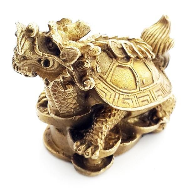 Small Dragon Tortoise
