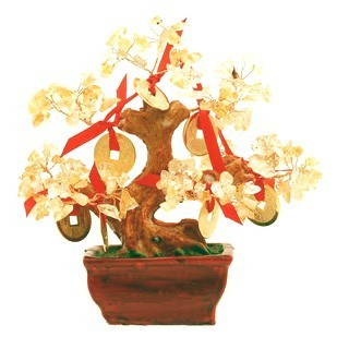 Citrine Tree with 9 Gold Coins for Super Wealth ( Special Offer )