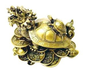 Dragon Tortoise - Medium