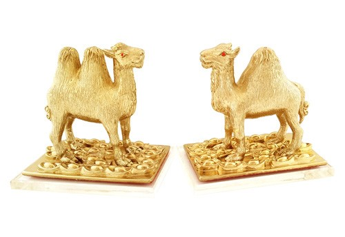 A Pair of Golden Camels to Safeguard Cash Flow