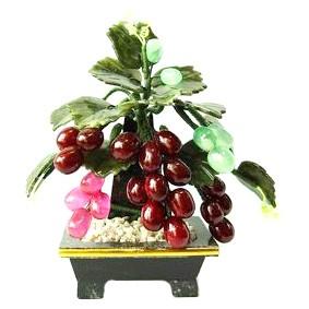 Grape Jade Tree - Small